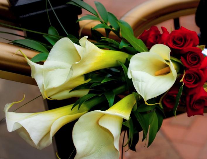 Какие цветы подарить мужчине: мужской букет