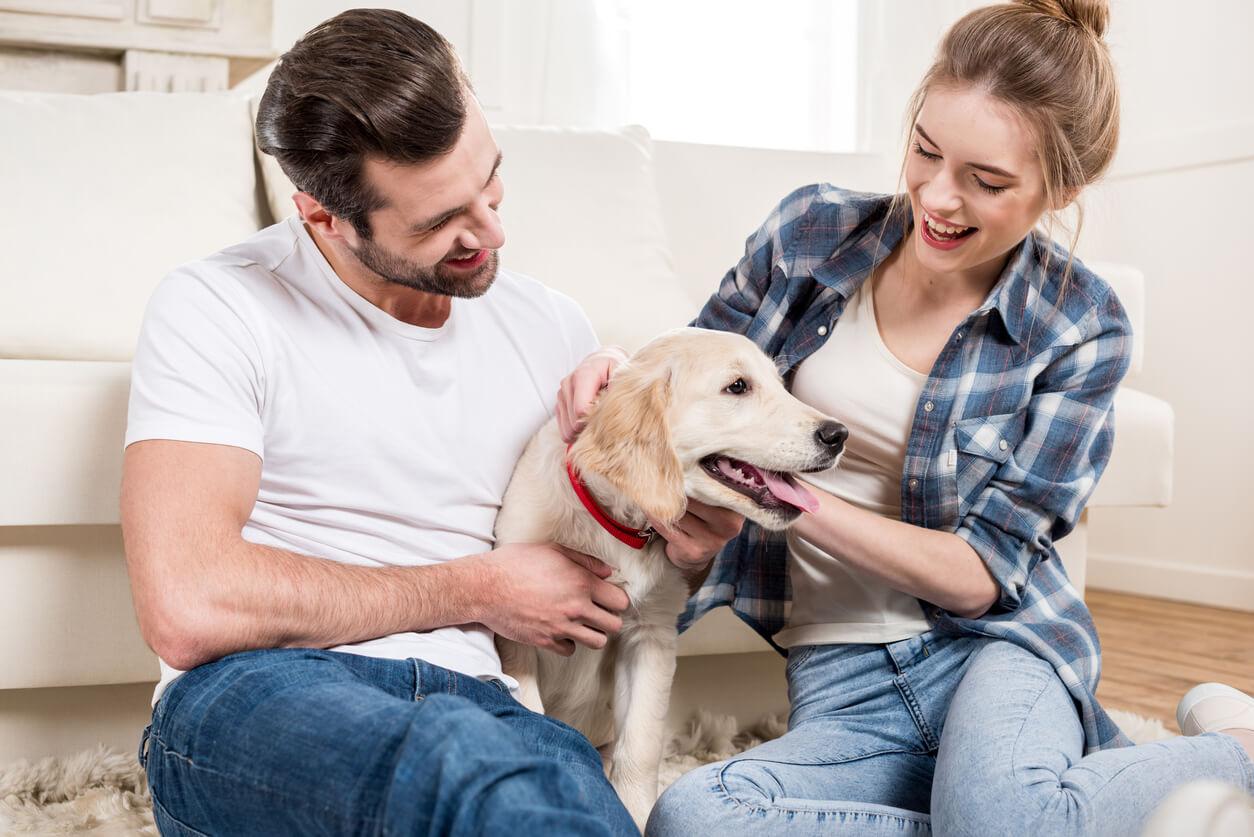 5 причин завести домашнего питомца молодым семьям