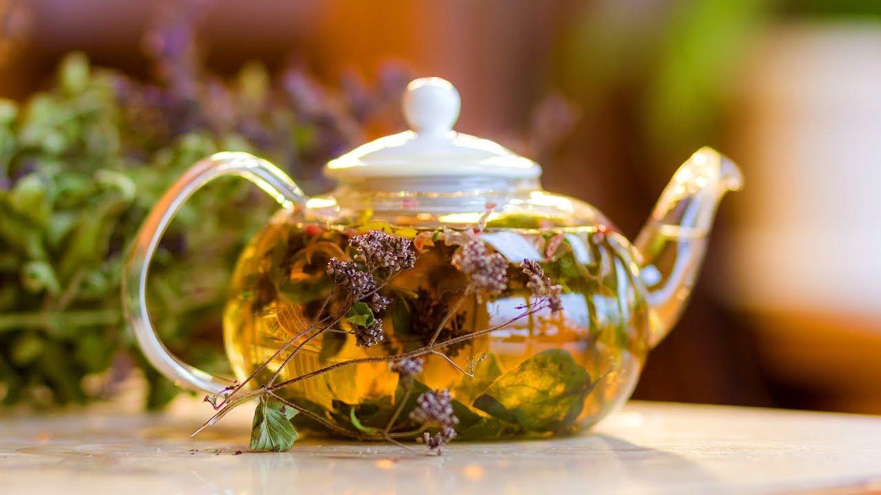 Какие травы можно собирать для чая?