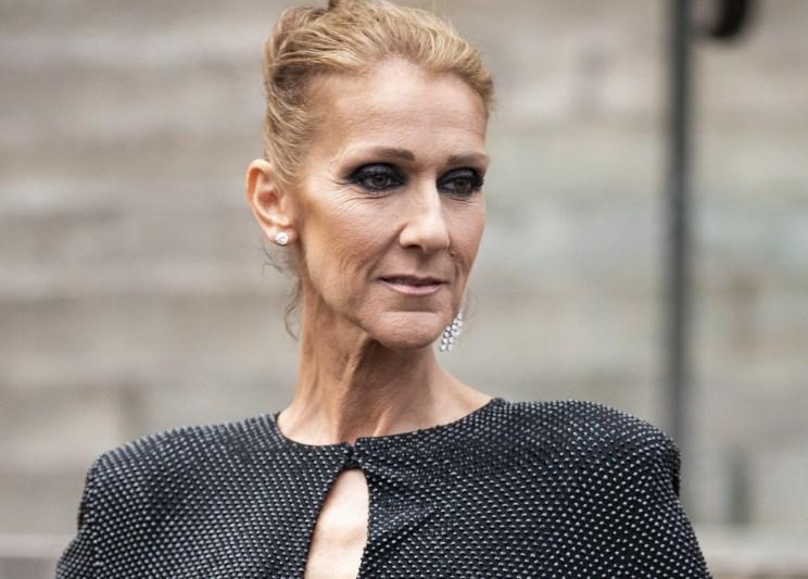 Селин Дион поссорилась с Анджелиной Джоли