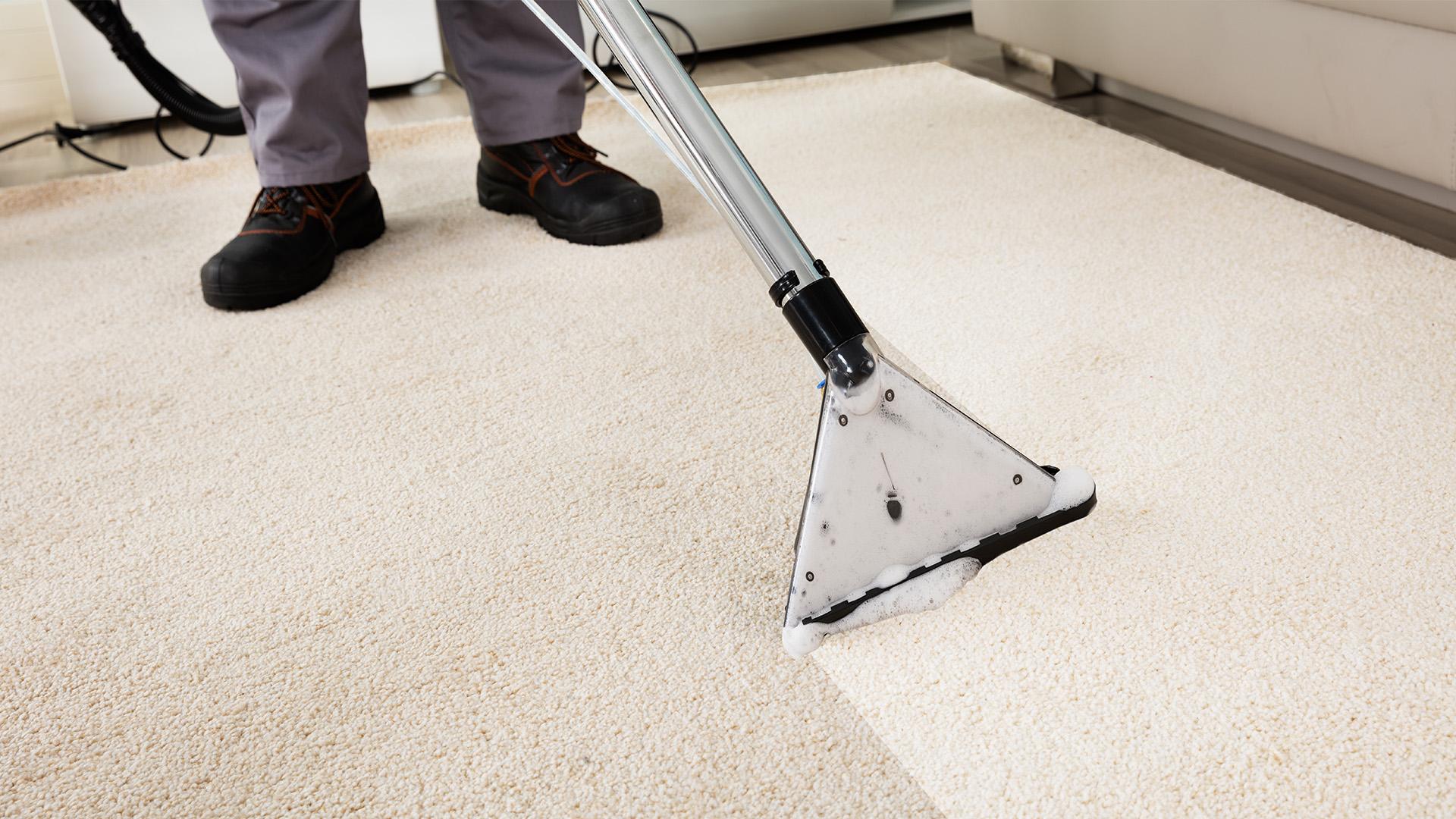 Как бороться с пятнами на ковре