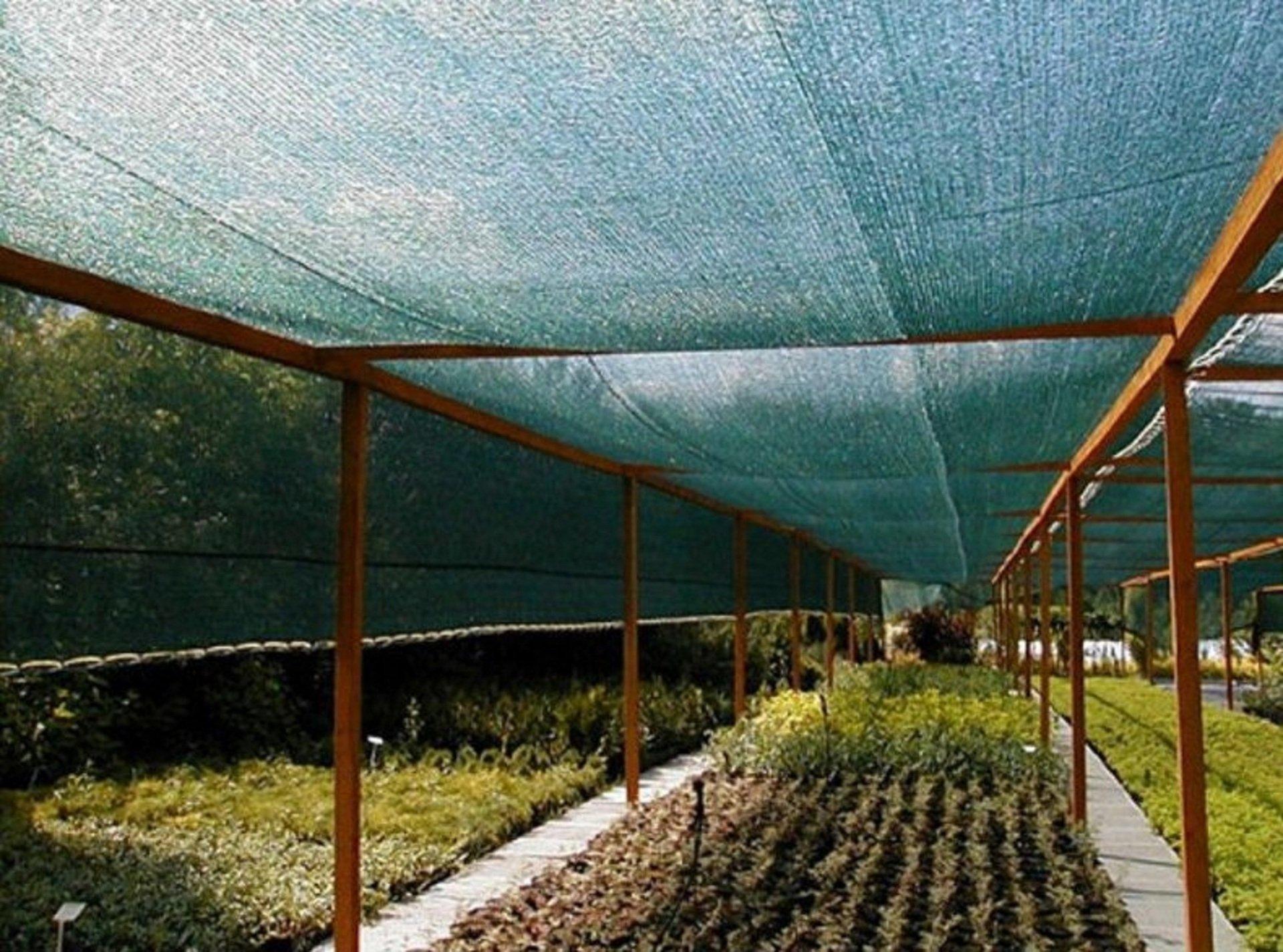 6 необходимых действий садовода для подготовки садового участка к зиме