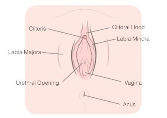 Для получения оргазмов места знать нужно