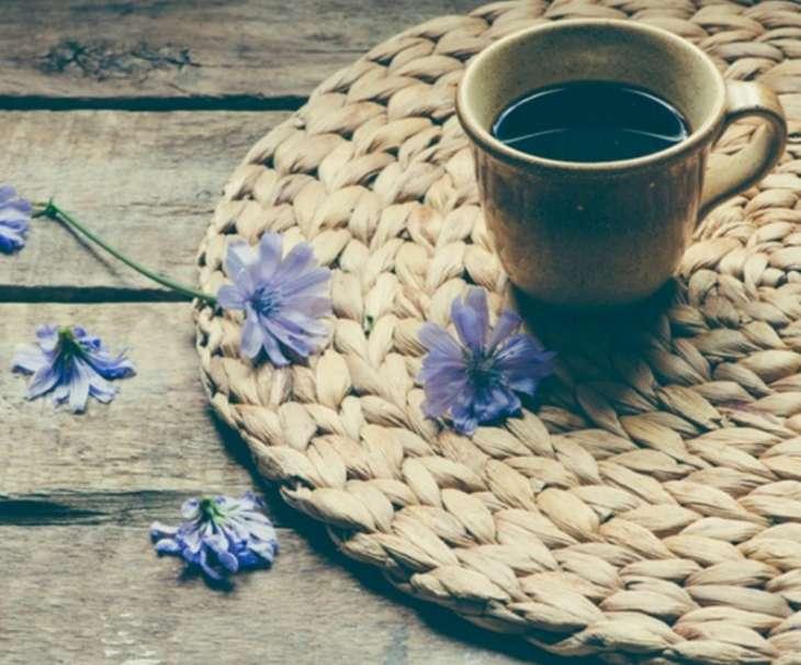 Полезный аналог кофе: все про цикорий