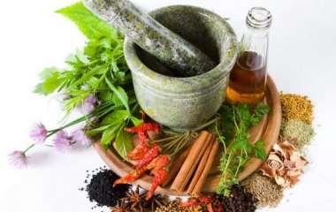 Худеем без вреда для здоровья: лучшие травы для похудения