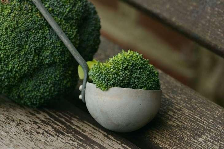 Готовим брокколи вкусно: идеи из Европы, Америки и Азии в кулинарную тетрадь
