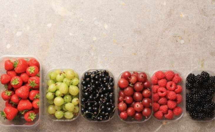 Летние фрукты: калорийность и польза, как употреблять с пользой для здоровья