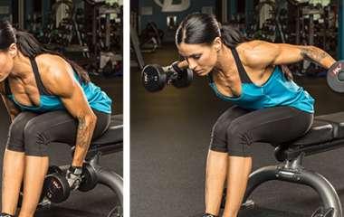 Силовые упражнения: тренируемся с гантелями, сидя на скамье