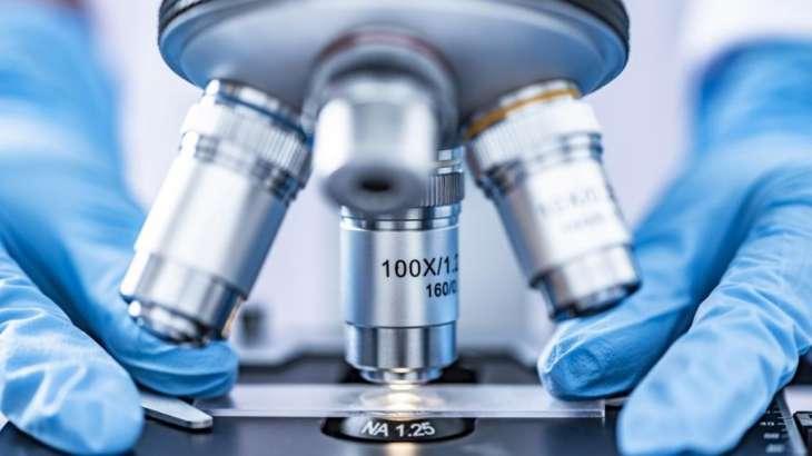 Эксперт перечислил способы укрепления врожденного иммунитета