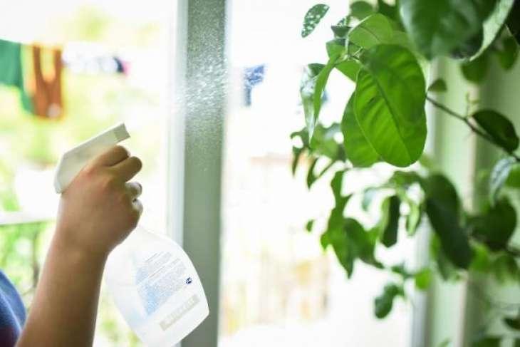 Чем опасен для организма сухой воздух в помещении и как с ним бороться?