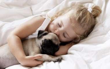 Какую собаку выбрать для ребенка: 6 самых безобидных пород