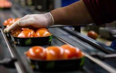 Терапевт предупредила об опасности покупки мытых овощей и фруктов