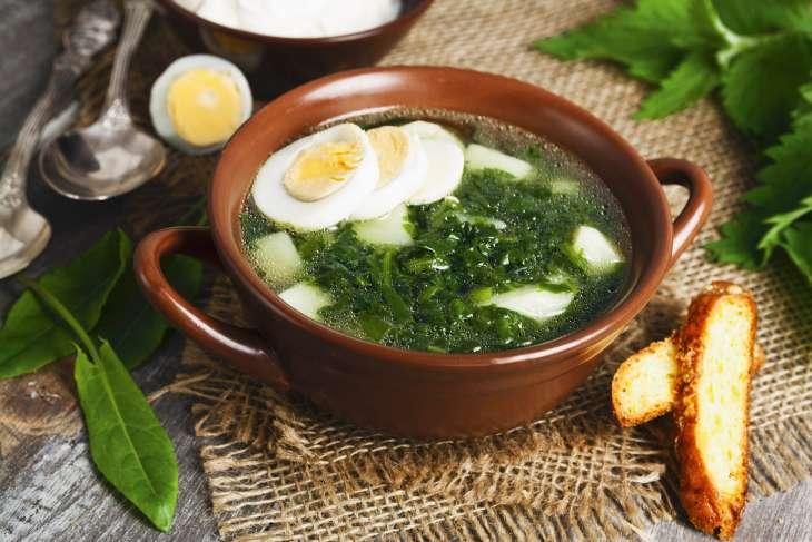 Запас еды на огороде: готовим варенье из одуванчиков и суп из крапивы