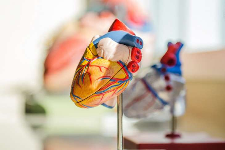 Названы нетипичные признаки болезней сердца