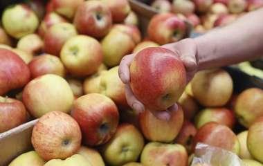 Диетолог рассказала о дневной норме потребления яблок