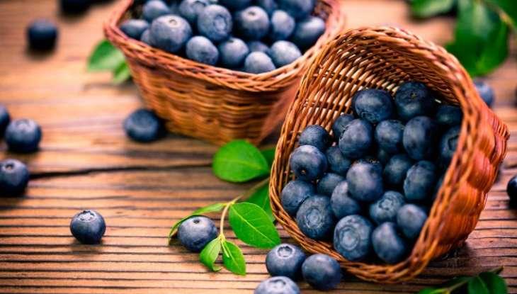 Самые полезные ягоды в летний сезон назвала диетолог