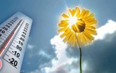 Врачи дали совет как пережить аномальную жару и помочь организму справиться с высокой температурой