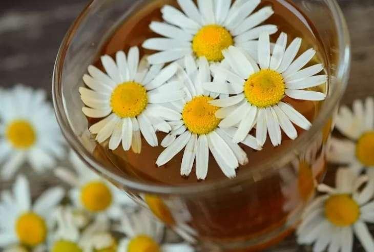 Врачи рассказали почему людям с диабетом стоит пить ромашковый чай