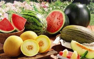 Диетолог сравнила пользу арбуза и дыни и назвала менее калорийный плод