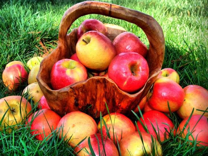 Яблоки для здоровья и красоты