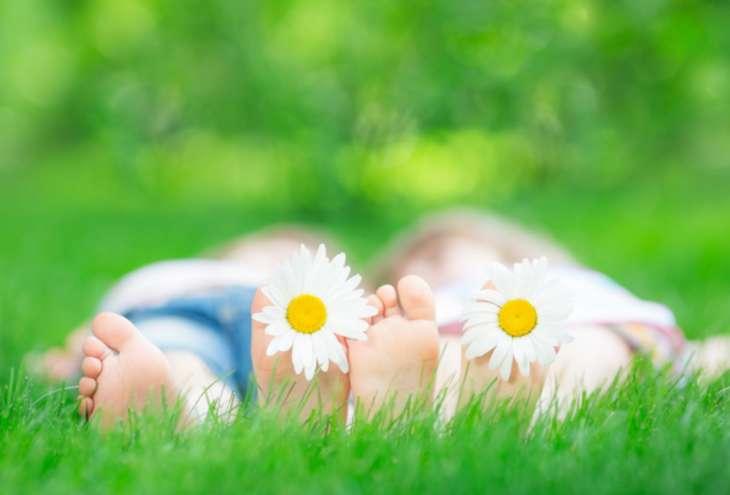 Как вытащить клеща у ребенка — советы педиатра