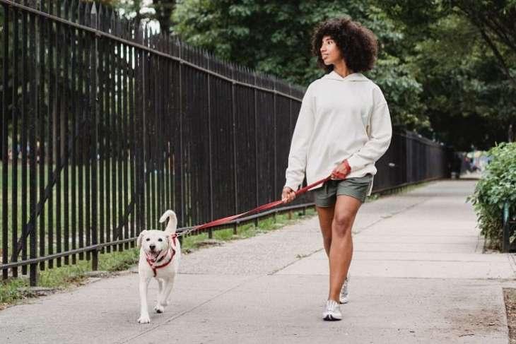Что происходит с вашим телом во время простой прогулки