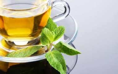 Диетолог рассказала, какой зеленый чай является полезным