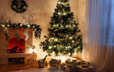 Как правильно установить елку и обезопасить ее от домашних питомцев