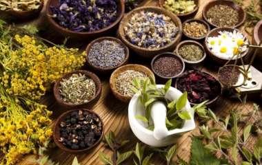 От артрита и при диабете: названы полезные свойства одного растения