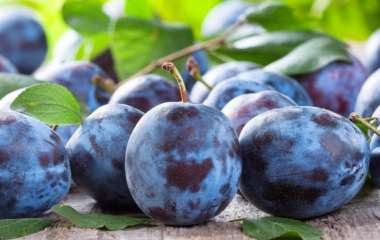 Врач назвал помогающий снизить давление фрукт