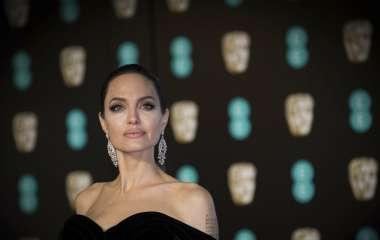 Анджелина Джоли прилетела в Прованс в костюме пасечника