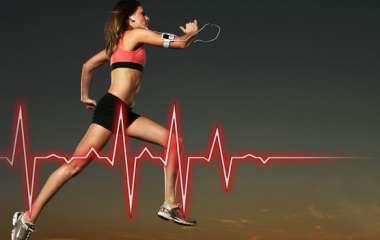 Кардиотренировка для здоровья и фигуры: в чем её польза, главные упражнения, правила и программа