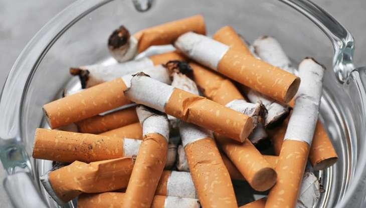 Ученые рассказали о влиянии алкоголя и курения на мозг