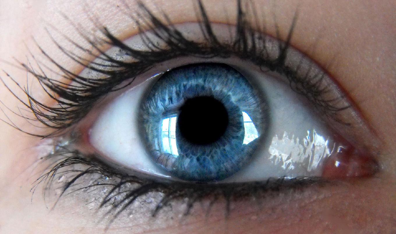 Цвет глаз говорит о