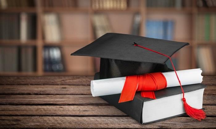 Дипломы-курсовые-рефераты