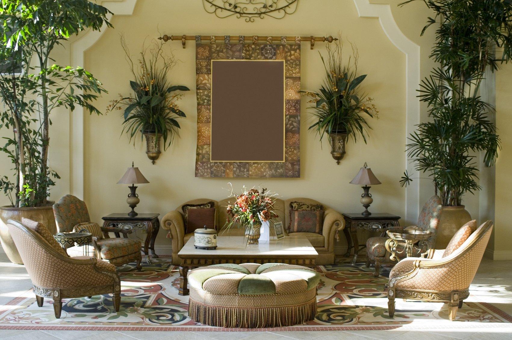5 идеальных комнатных растения для вашей квартиры
