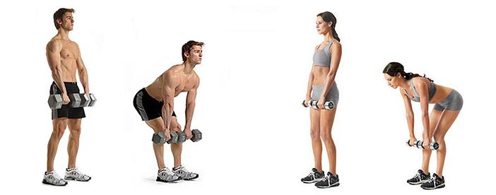 Укрепляем мышцы: мертвая тяга с гантелями для женщин и мужчин